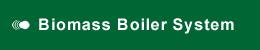 Biomass Boiler System