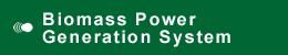 Biomass Power Generation System
